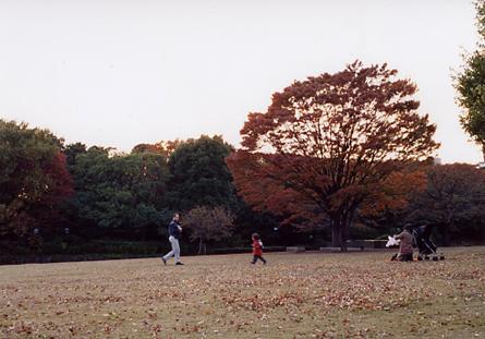 200511_fall1